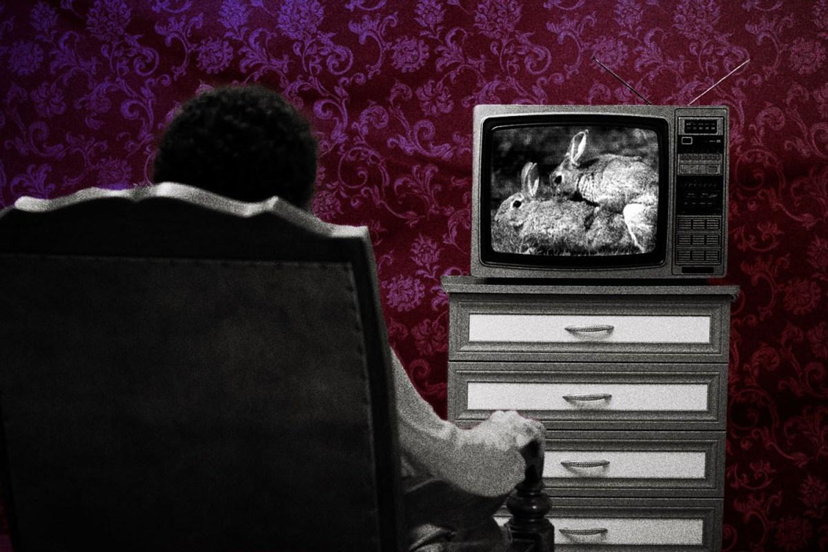 man watching porn