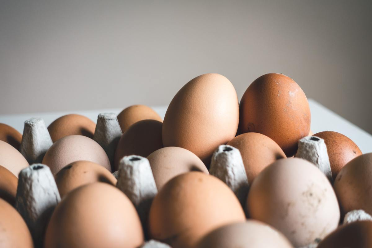 Eggs variety of white and brown eggs in a carton