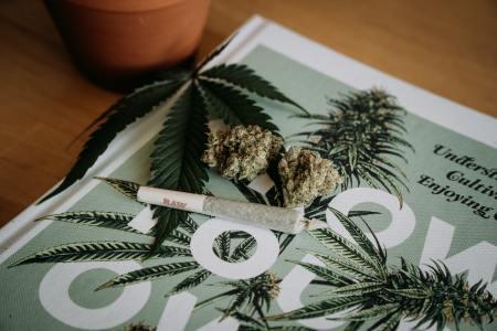 new york recreational cannabis