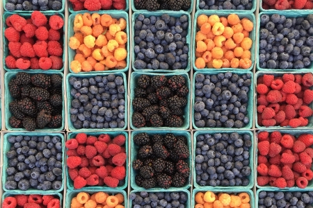 An overhead shot of blue cartons filled with red, blue and orange berries
