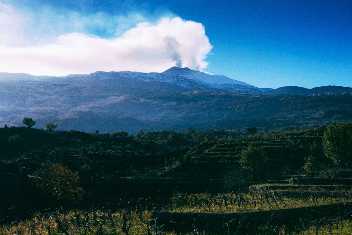 Near Sicily, this is Mount Etna in a smoking phase above the vineyards of Duca di Salaparuta.