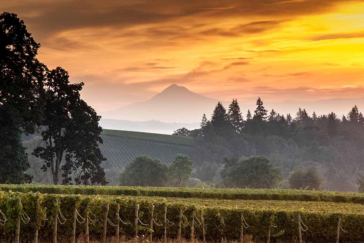 Mount Hood in Oregon at sunset