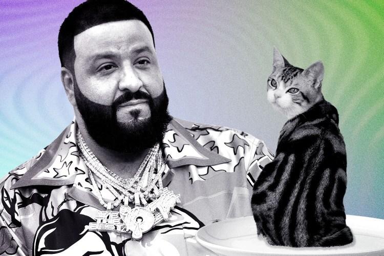 Photo of DJ Khaled and a cat