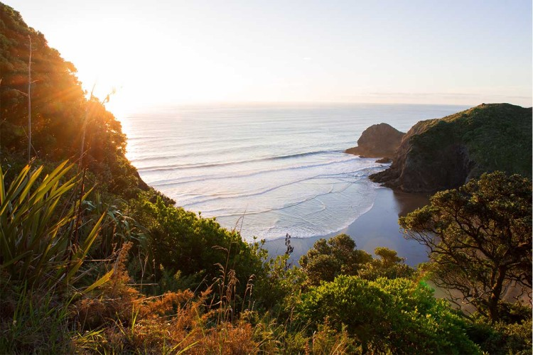 """Between two iconic Auckland beaches - Anawhata and Piha - lies White's Beach, New Zealand. if society collapses, new Zealand is seen as one of five areas that could serve as a """"collapse lifeboat"""""""