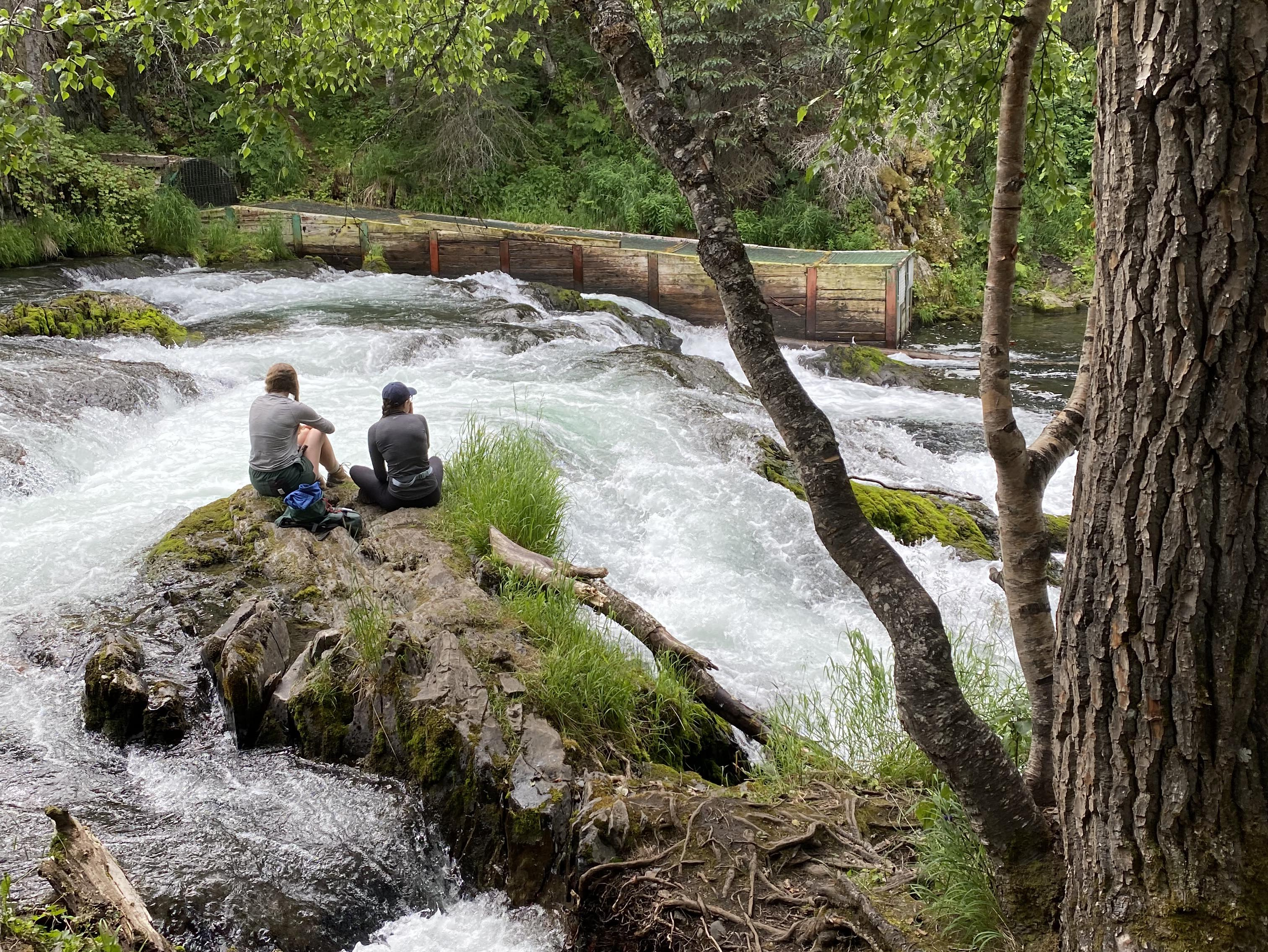 The destination of our off-piste hike near the Kenai Riverside Lodge