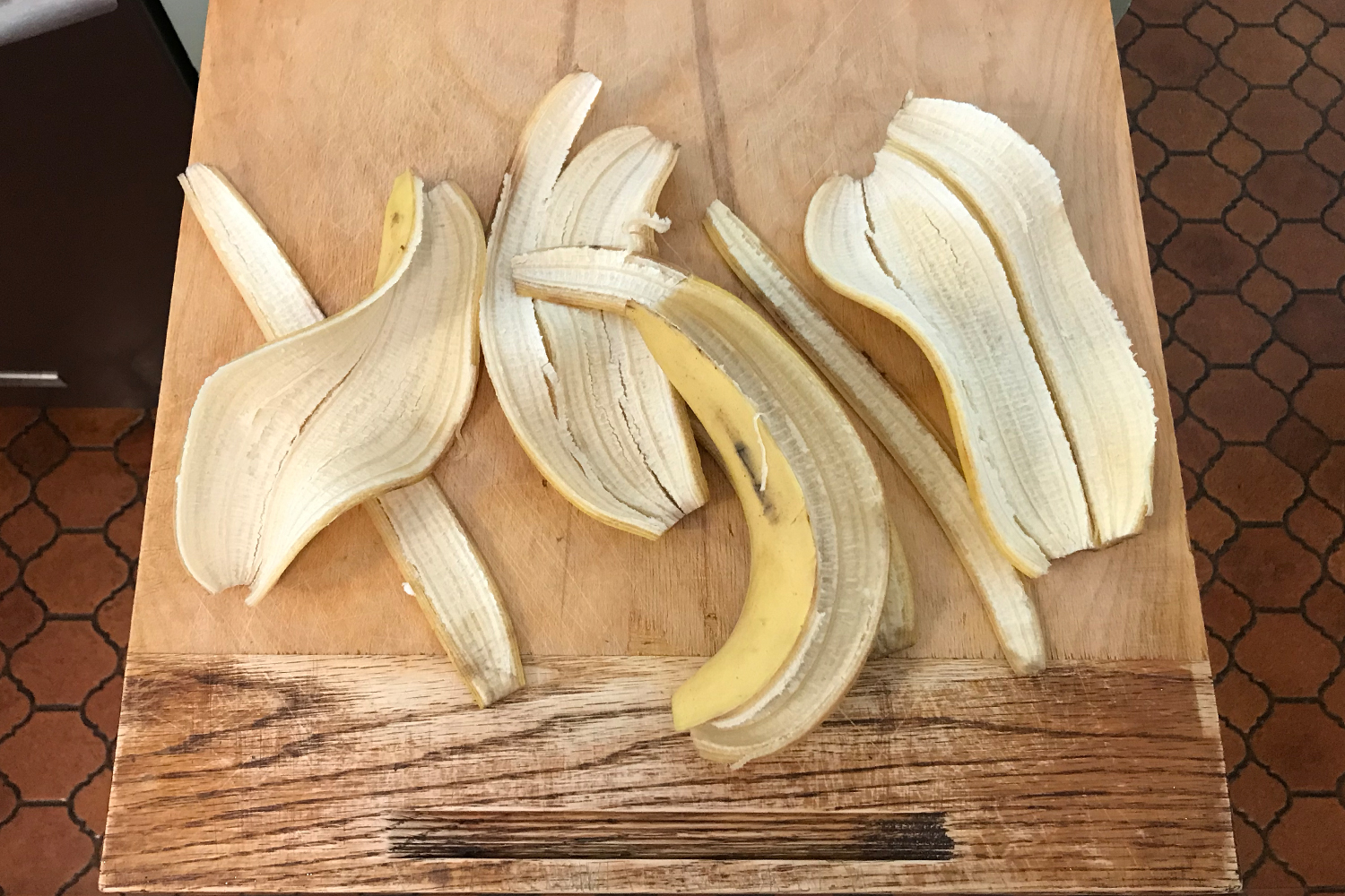 Banana peels without the fruit inside. This is the first step in a recipe for banana peel bacon, a polarizing fake meat dish.