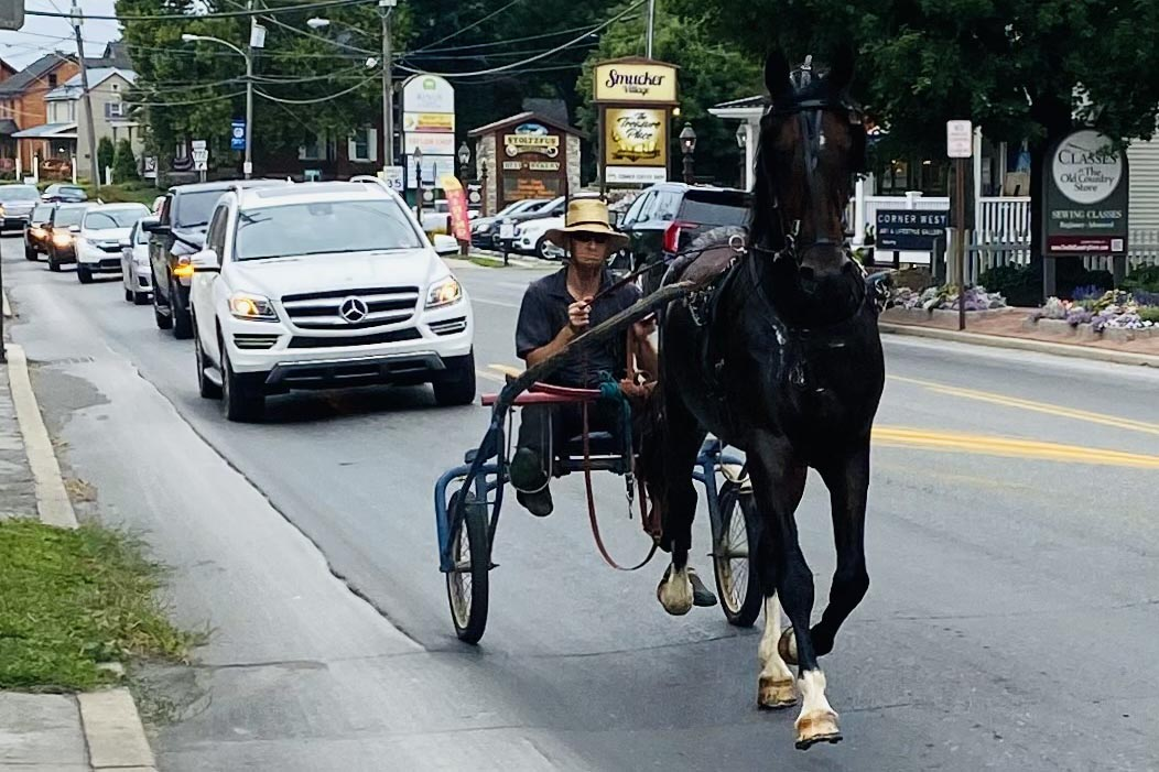 A local Amish man guides his buggy through the middle of Intercourse, PA