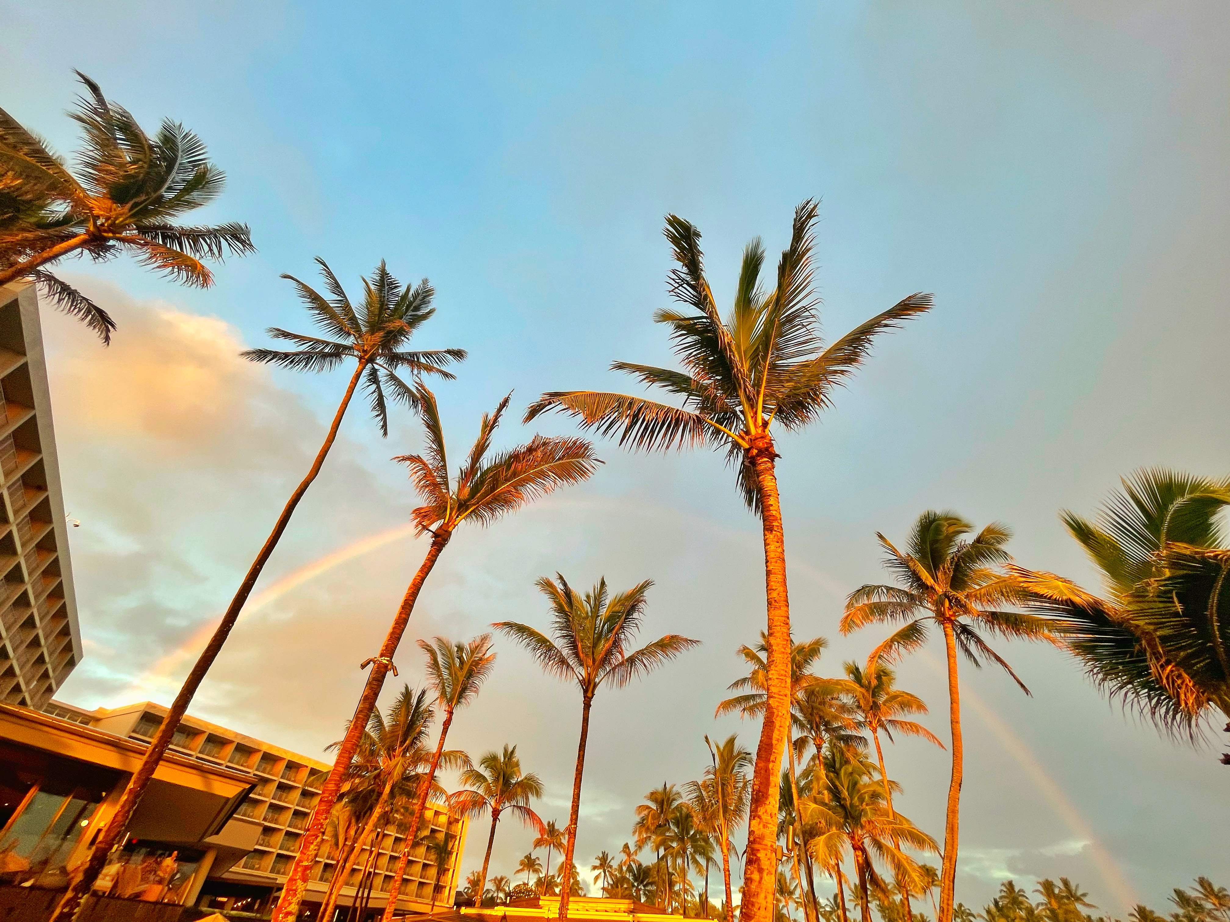 A rainbow appears over the palm trees at Turtle Bay Resort on the North Shore of Oahu