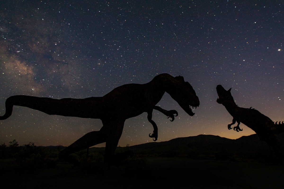 silhouettes of two dinosaurs about to enjoy a romantic evening under the stars.