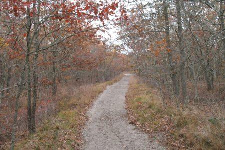 Southampton trail