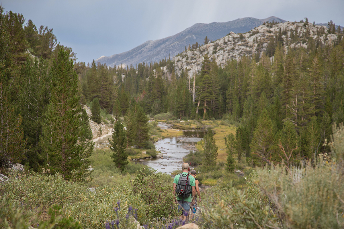 A pair of hikers walk through the wilderness towards a river surrounded by green trees with hills in the background