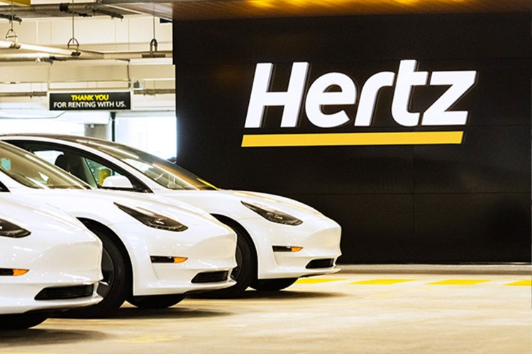 Three white Tesla Model 3 electric vehicles sitting next to a Hertz sign. The rental car company ordered 100,000 EVs from Elon Musk's car company.