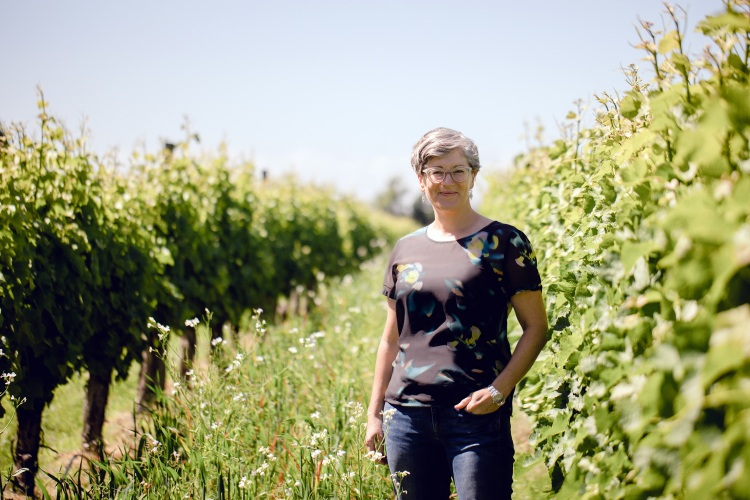 2021 New Zealand Winemaker of the Year Jules Taylor in her Marlborough vineyards