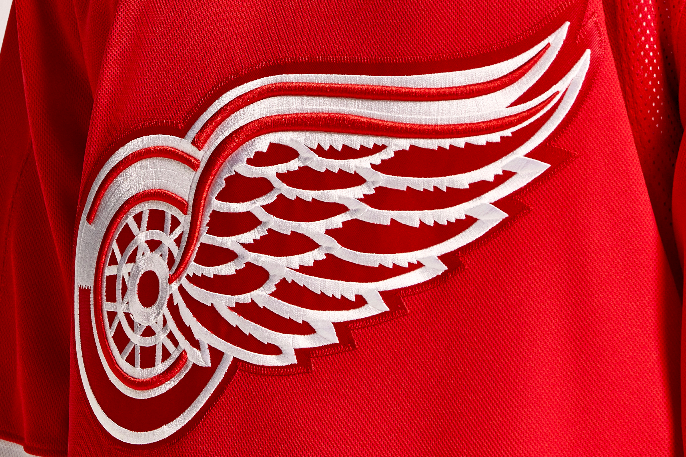 The Red Wings' jersey.
