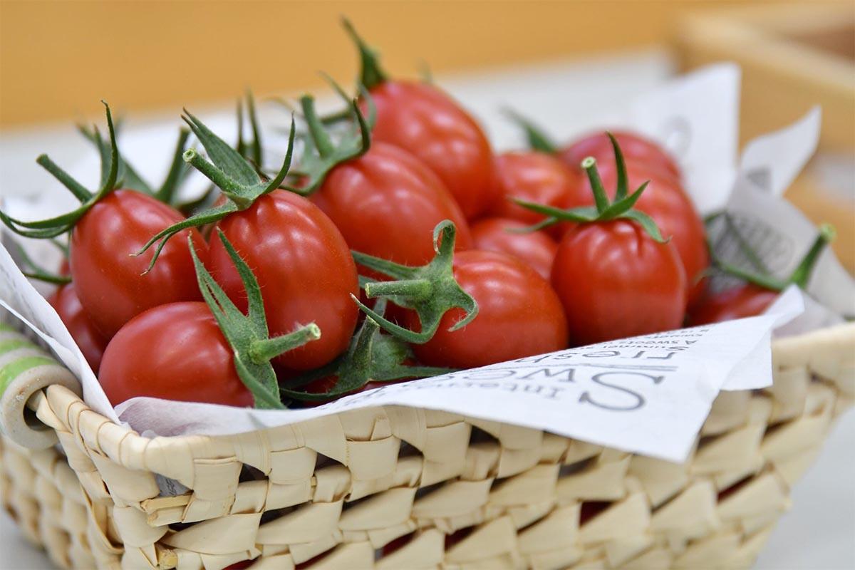 The Sicilian Rouge High GABA tomato, a CRISPR gene-edited food now on sale